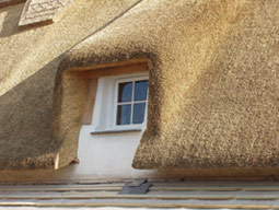 Thatched window detail