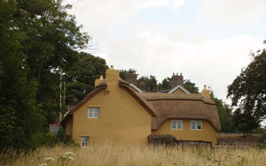 View of thatched long house
