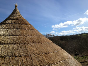 Rick thatching at Castell Henllys