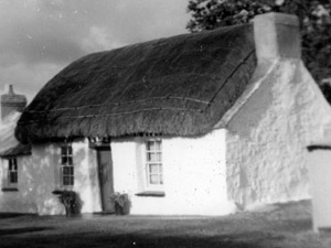 Thatched long house detail