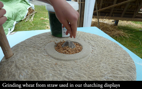 Grinding Wheat from straw used in our displays.