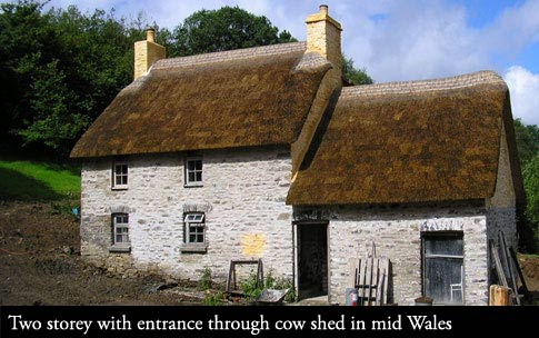 Vernacular thatching methods restoring a Welsh longhouse to its former glory.