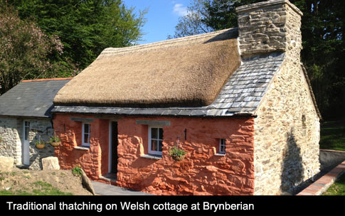 Traditional thatching techniques applied to Welsh Cottage at Brynberian