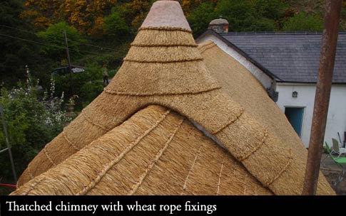 Traditional fixing methods used to hold thatch in place.