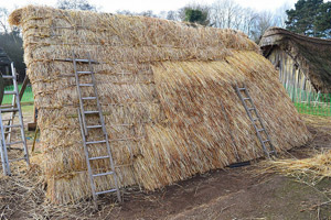 Thatch being applied