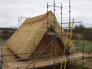 Internal view of Thatch work